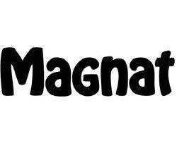 altavoces Magnat